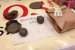 phoca_thumb_l_7_laboratori_alimos_foro_annonario_cesena_bombe_di_semi